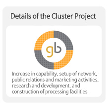 Details of the Cluster Project